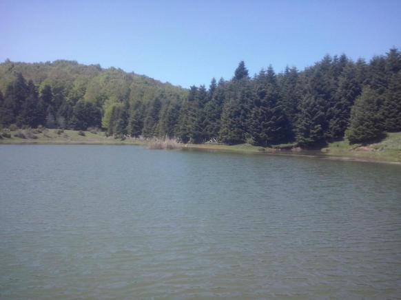 Εικ. 10 Η λίμνη του Κατή συνέβαλε στην βελτίωση της αισθητικής αξιοποίησης του φυσικού δασικού περιβάλ