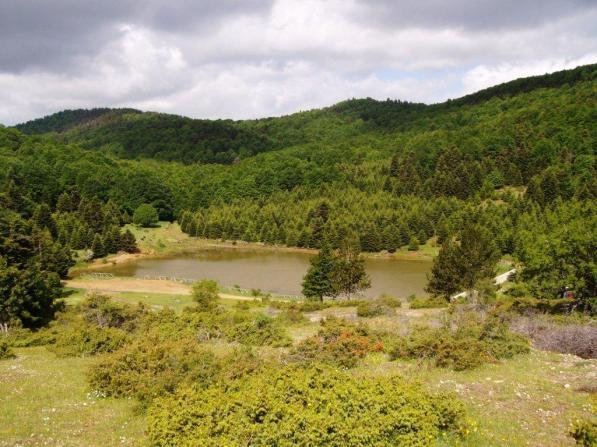 Εικ. 17 Ο κρυμμένος Θησαυρός ! ! ! Μια βόλτα στη λίμνη του Κατή θα ανακαλύψουμε την ωφέλειά της στην υγεία